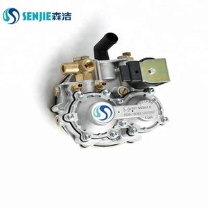 CNG small engine efi kit/ at04 reducer kits