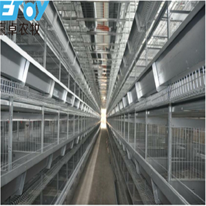 Chicken Egg Layer Cages For Poultry Farm