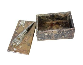 Fashionable Square Jewelry Box Orthoceras Fossil Of Gemstone