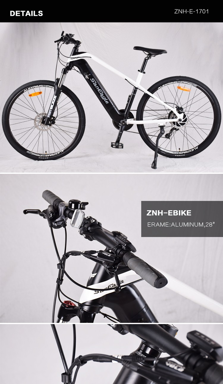 ZNH-E-1701 Saneagle  electronic bicycle e-bike