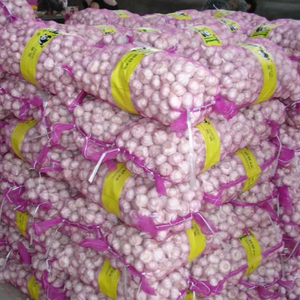 Wholesale Import China Garlic Price With Different Specification