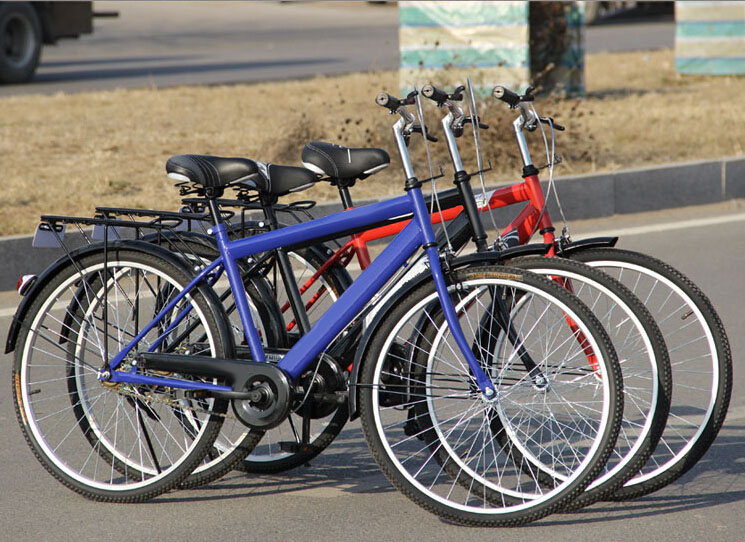 High Quality Steel Frame City Bike 26 With Best Spokes