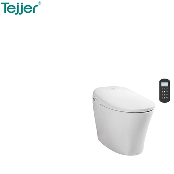Astounding Remote Control Intelligent Female Bidet Chemical Toilet Buy Chemical Toilet Intelligent Female Bidet Chemical Toilet Remote Control Chemical Toilet Pdpeps Interior Chair Design Pdpepsorg