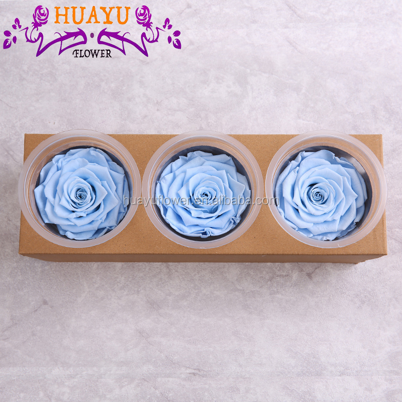 Orchids preserved roses flowers for wedding decoration in alibaba
