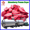 High Capacity food freeze dryers for home use