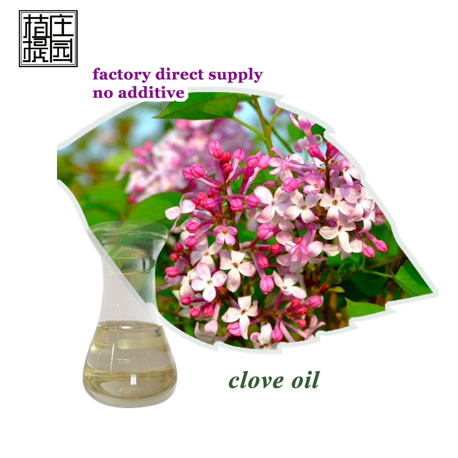 Supply Hot selling pure clove oil for tobacco flavor