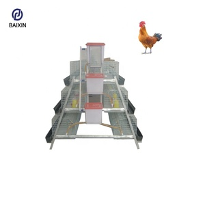 Baixin High Quality Full Set Automatic Poultry Laying Hens / Egg Layer Chicken House for Sale