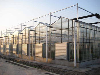 Hot Sale Greenhouses Tropical Climate Buy Commercial
