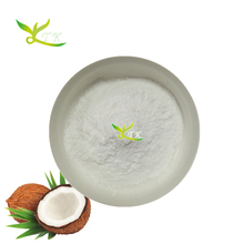 Organic Low Fat Desiccated Coconut Milk Protein Powder