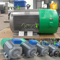 Low speed water Turbine Generators! 100kw low rpm ac PMG for widely use