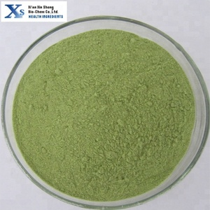 GMP High Quality standard Natural Kale Powder