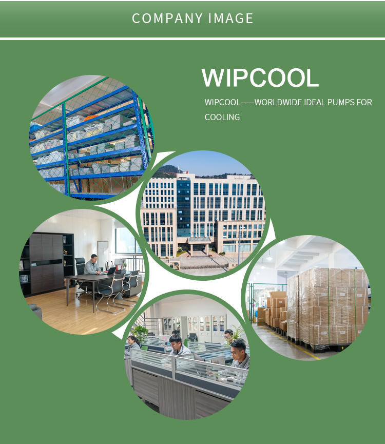 Bán chạy nhất Wipcool 125L/H Condensate bơm PC-125A