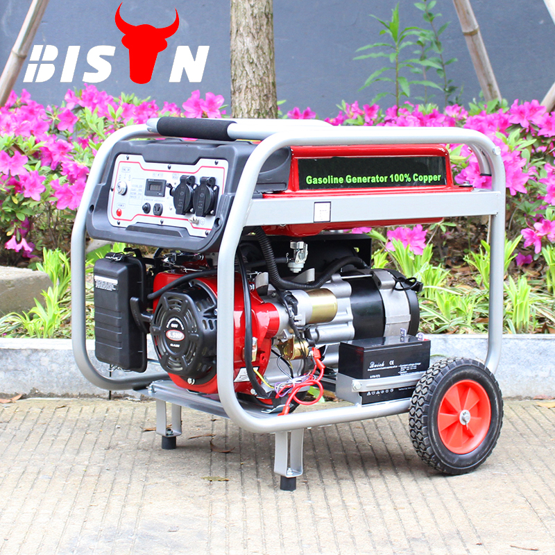 BISON(CHINA) BS2500E 2KW 2KVA Factory Price Electric Start Copper Wire Home Use Portable New Type Popular Gasoline Generator
