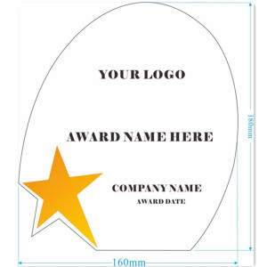 Star Crystal Glass Awards Trophy Customized Logo Words