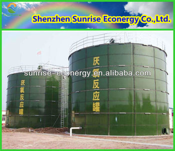 Su larga scala Professionale biogas azienda/biogas power plant dalla Cina