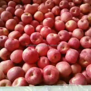Red fuji apple import from china