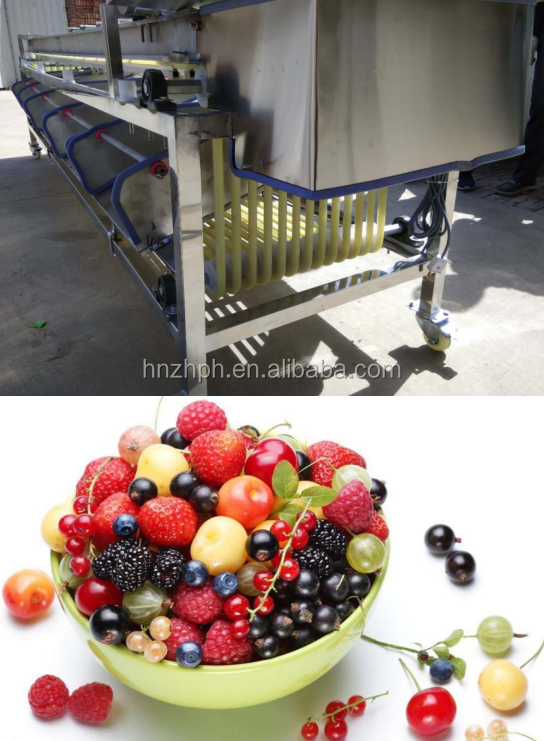 Commerical Passion Fruit Processing Avocado Onion Size Grading Sorting Machine