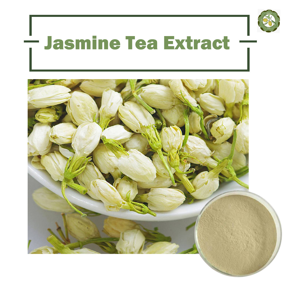 High quality jasmine tea extract jasmine tea extract powder 10 high quality jasmine tea extract jasmine tea extract powder 1020 polyphenols buy jasmine tea extractjasmine tea extract powderpolyphenols product izmirmasajfo