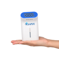 Personal healthy electronic air cleaner
