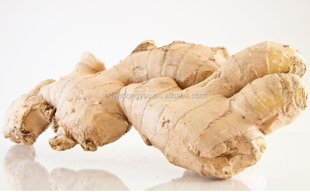 Chinese fresh ginger for market price