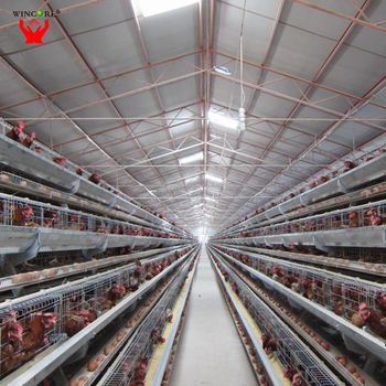 High Quality Low Cost Design Modern Chicken Farm For Layer Hen Egg