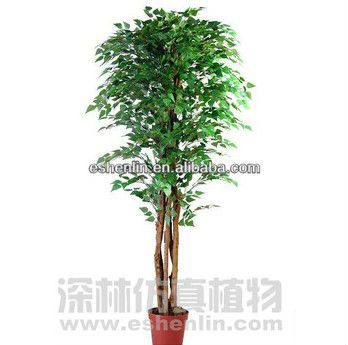 Wholesale artificial BIRCH real trunk trees(SIX trunks) , plastic trees