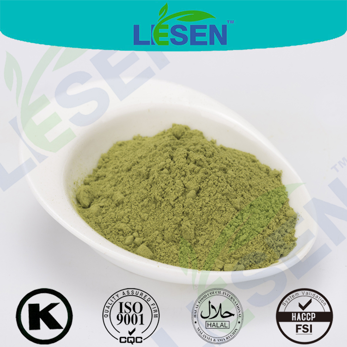 High Quality Vegetable Spinach Powder