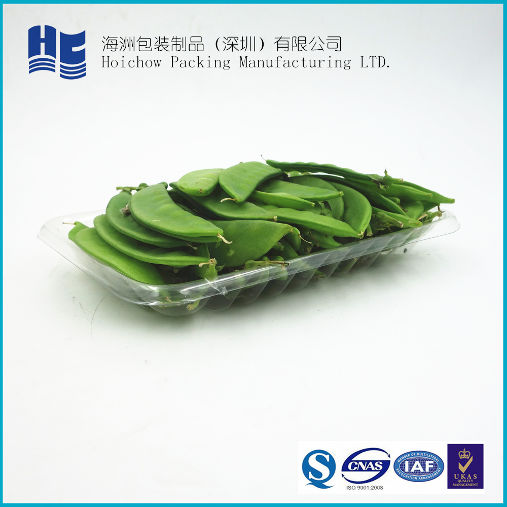 China Supplier Cheap Price clear disposable food grade PET plastic blister insert food tray