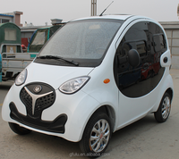 2016 Hot-selling new energy electric car without driving licence with lower/electric car made in China