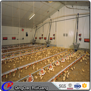 Hot Sale Steel Structure Poultry farm construction Commercial Chicken House with equipment