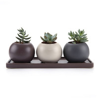 Hot Sale Personalized Handmade Ceramic Succulent Plant Pot With Saucer