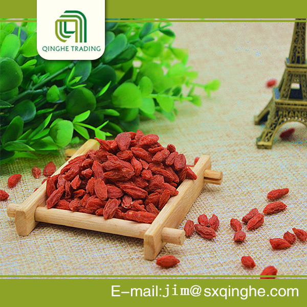 Dry Fruits: Dried Fruit Importers