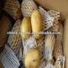 New Crop 2012 Fresh Potato Seeds for Sale ( Organic , High Quality )