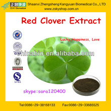 Red Clover Herbal Extract Powder