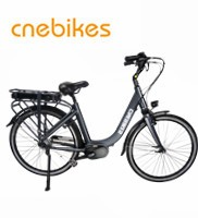 250W New folding e bike /Cheap electric bike / Mini bicycle / foldable