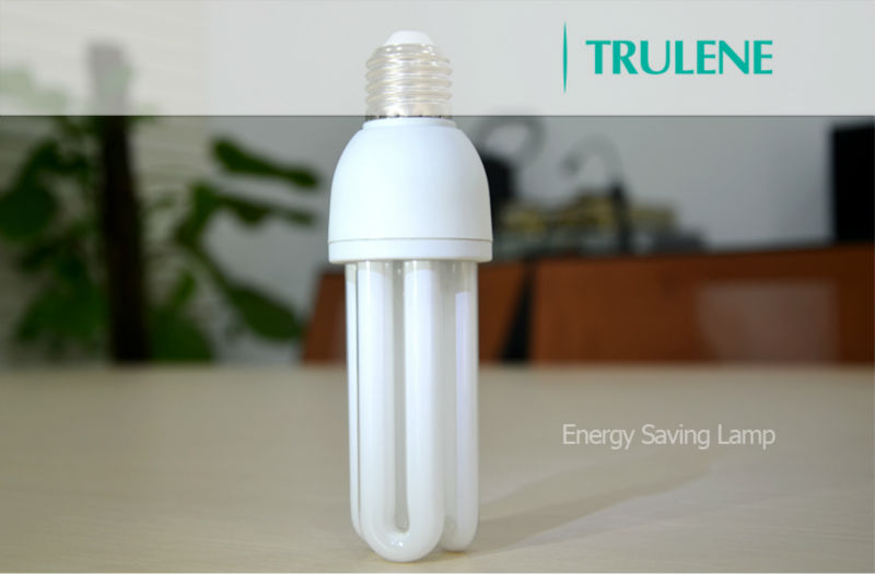cfl light bulb with price.jpg