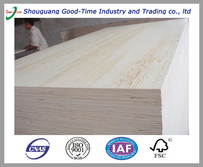 Shouguang Good-Time 18mm Birch plywood good quality for furniture
