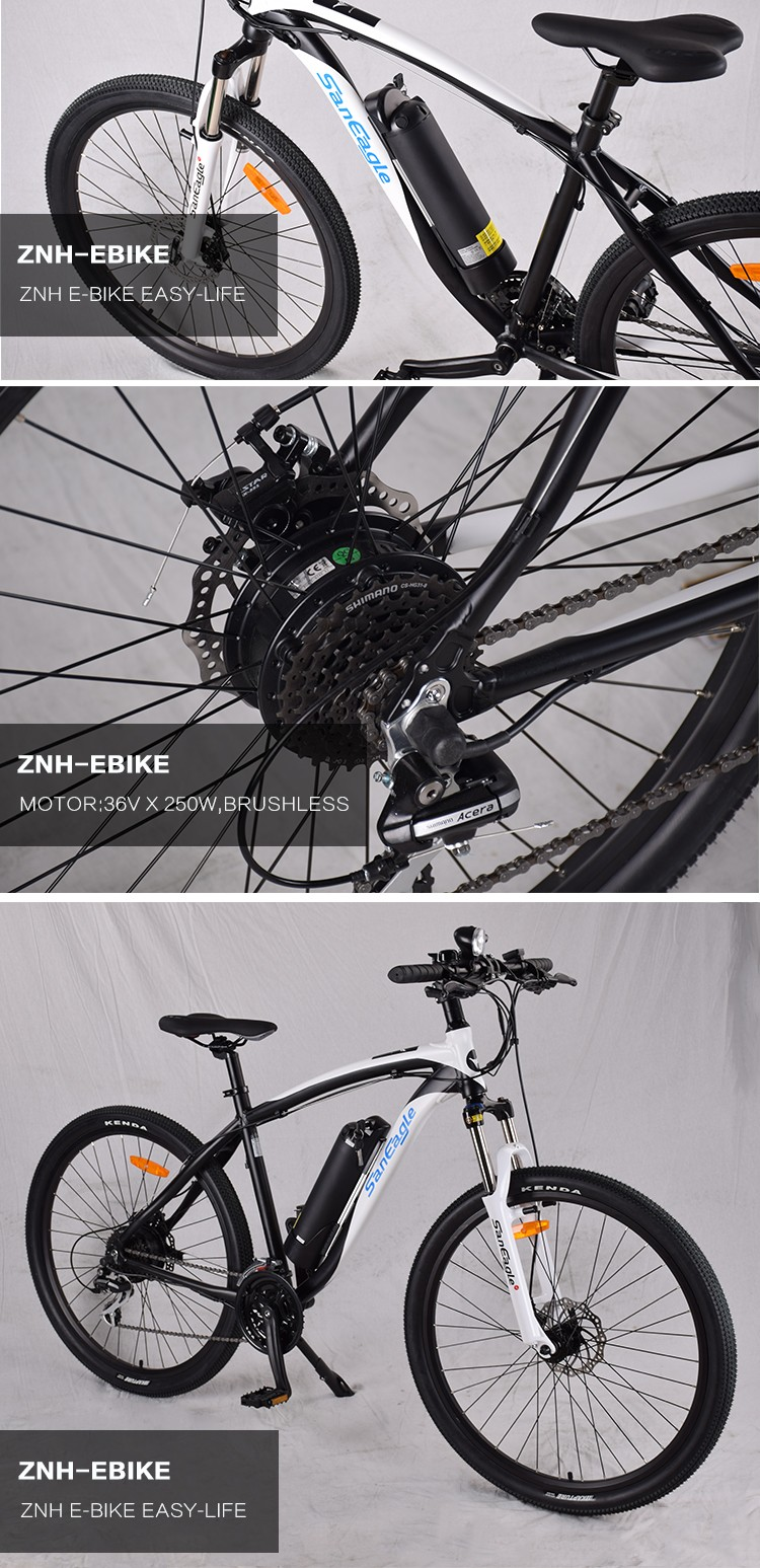 ZNH-E-1707 Saneagle electric bike
