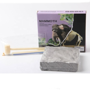 Mammoth fossil collection 3D fossils dig toy educational toys discover science kits