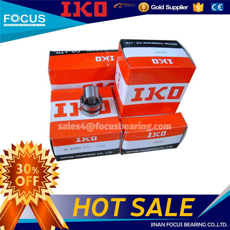 IKO Bearing Distributor IKO Needle Roller Bearing NK24/20 with IKO price