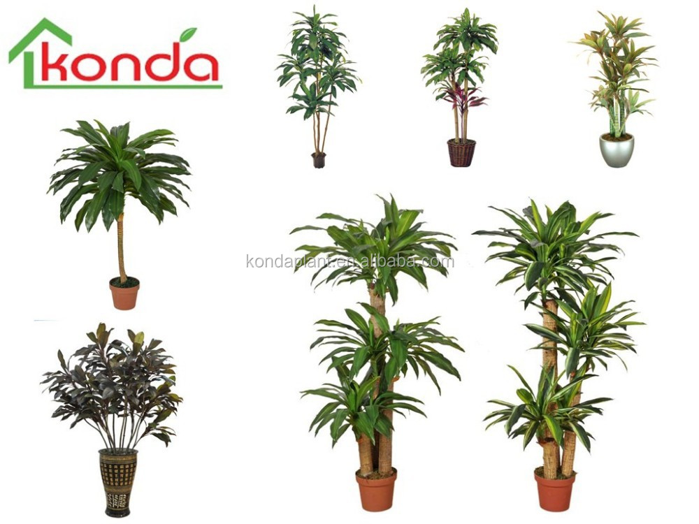 Impianti di decorazione artificiale planta falso for Plantas decorativas resistentes
