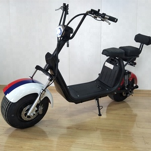 cheap price fat tire halley citycoco type adult electronic power bike citycoco with double seats
