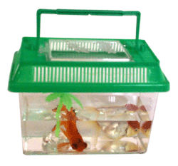 Mini r servoir de poissons d 39 aquarium en plastique avec for Mini poisson aquarium