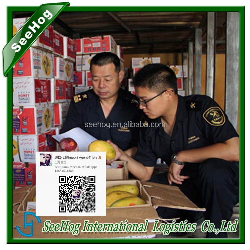 pasta hs code import hong kong agent offer customs quotation