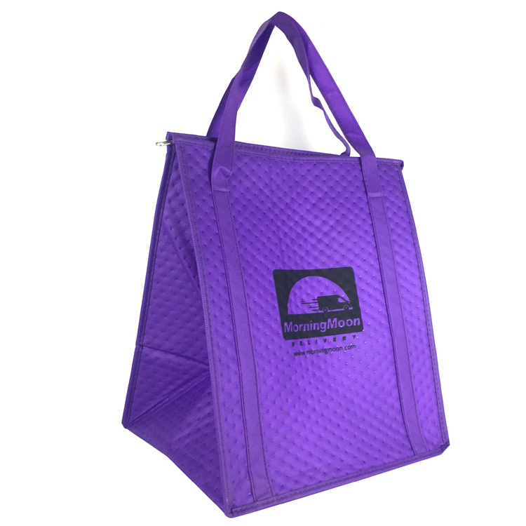 Wholesale pp woven clothing cooling cooler bag