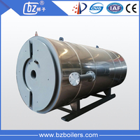 Best commercial gas fired thermic fluid boiler
