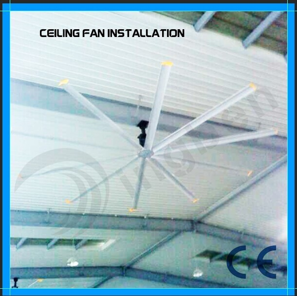 10 Metal Blades Large Ceiling Fan for Warehouse/Poultry/Greenhouse
