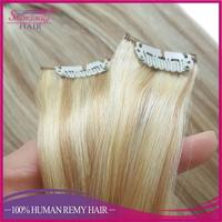 China hair factory wholesale oem remy hair extension clip in metal clips 100g set full head Australian