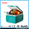 FREE SAMPLE - Newest Attractive Car Refrigerator Outdoor Car Refrigerators Mobile Car Refrigerators