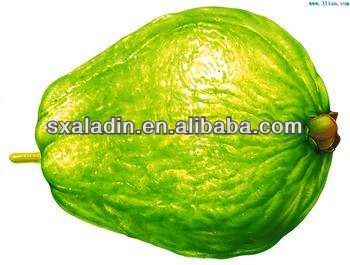 Plant Extract Guava leaf Powder,5:1, 10:1